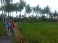 Ubud Bali (18)