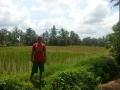 Ubud Bali (20)