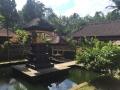 Ubud Bali (89)