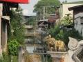 chiang mai (154)