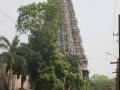Madurai-22