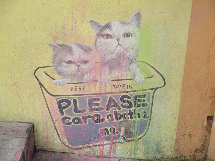 Dibujos-de-gatos-en-Georgetown-2