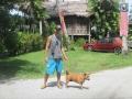 Lassie-Animal-Shelter-de-Langkawi-7