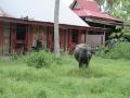 Soluna-Guest-House-Viviendoporelmundo-en-Langkawi-30