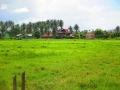 Soluna-Guest-House-Viviendoporelmundo-en-Langkawi-41