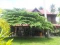 Soluna-Guest-House-Viviendoporelmundo-en-Langkawi-5